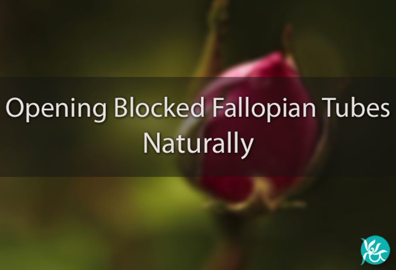 How to Unblock Fallopian Tubes Naturally Part 2 - Intra Lifestyles